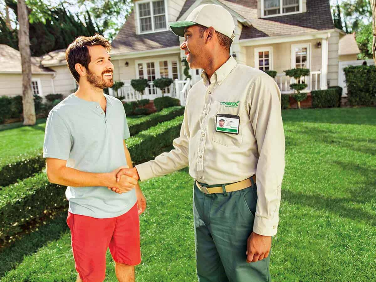 Lawn-care-promotions