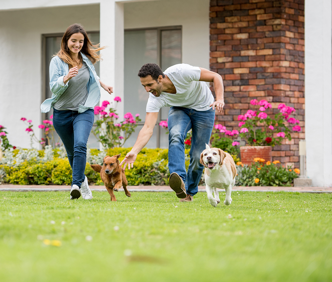 Happy family enjoying in the healthy green pest-free yard with their pets