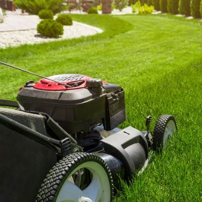 Proper mowing techniques is essential to your summer lawn care here in Prairieville, LA.