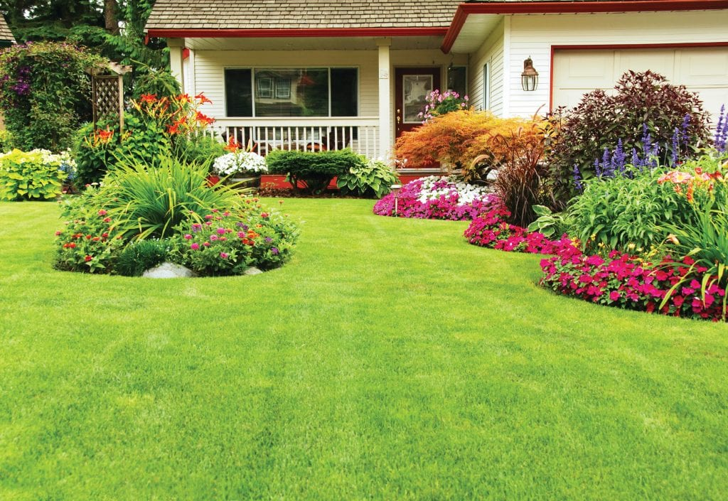 green lawn with colorful landscaping