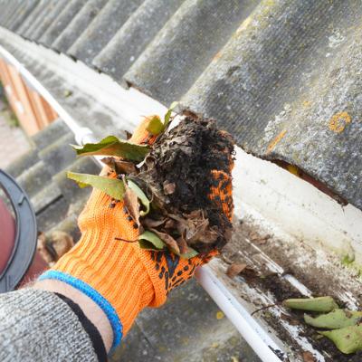 Cleaning out your gutters is an excellent fall mosquito control technique to reduce current and future mosquito populations in your Tupelo, MS lawn.