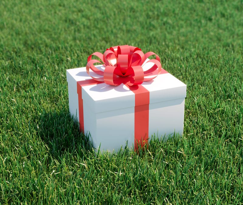 Give the perfect holiday gift of a healthy lawn with the help of a lawn care program from TruGreen Midsouth here in Zachary, LA.
