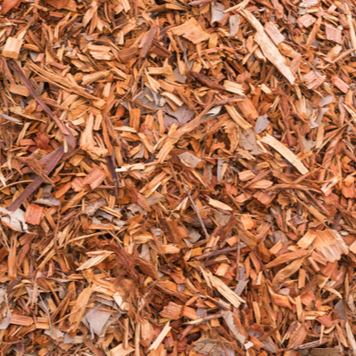 A great way to recycle your Christmas tree is by turning it into mulch for your lawn and landscaping.