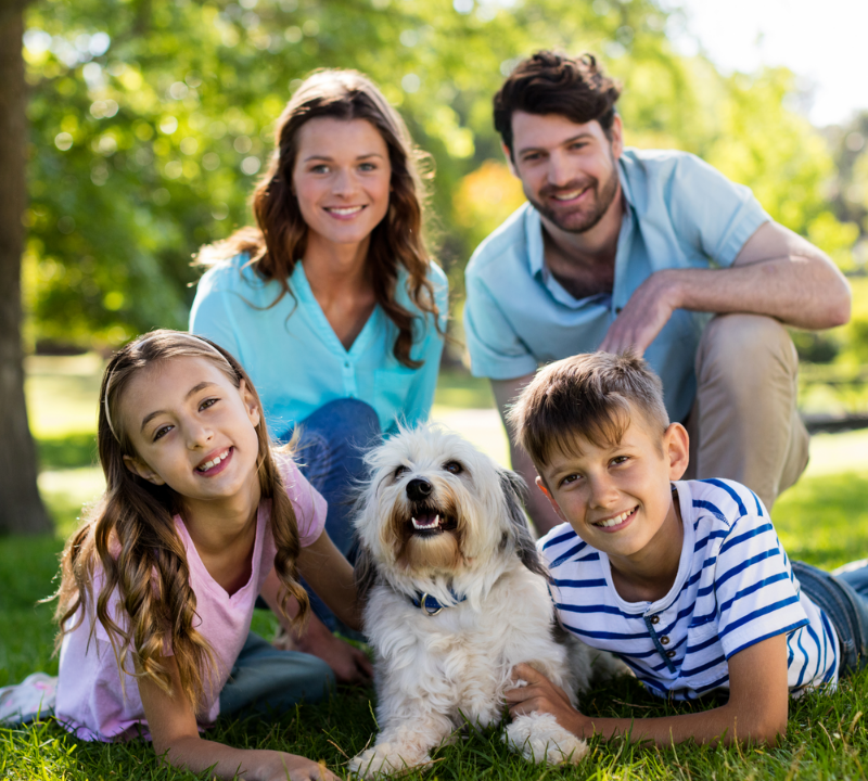 A family with their dog on the lawn